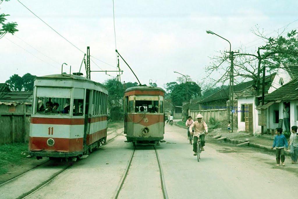 tram006