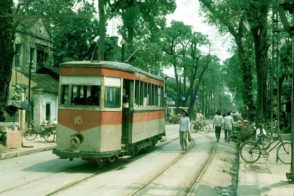 trams008
